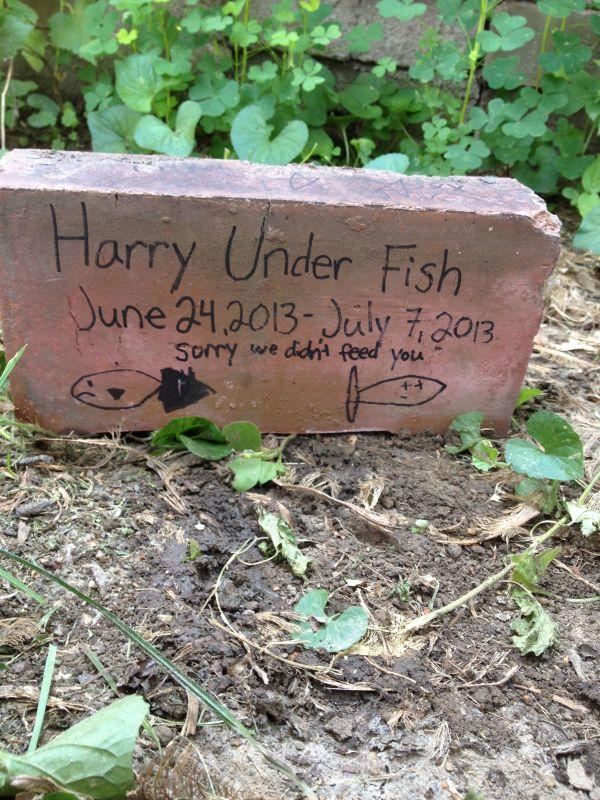 sad fish gravestone